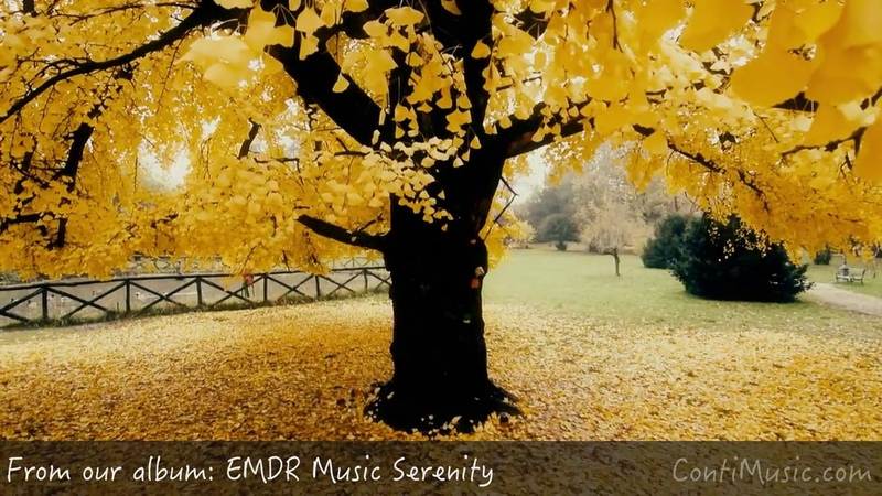 EMDR Therapy Session - Dissociation PTSD Therapy - Music For The Here And Now to Relax