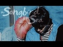 The sea is overflowing the songbird the sea trailer