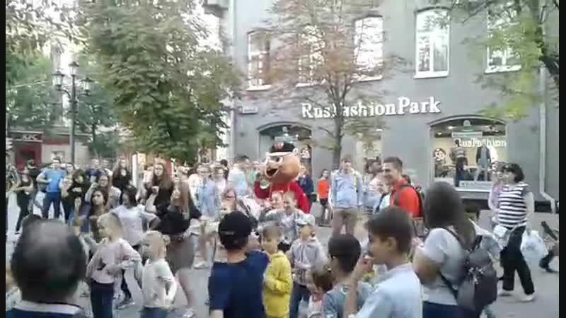 Хомяк видео СУШИ ВОК