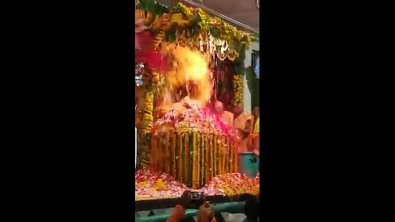Пушпа Абхишека Радхаштами 2018 Шри Дама Маяпур