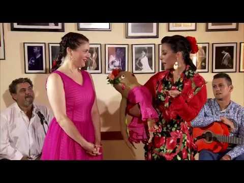 Pulpitarrita con Pasaporte Flamenco Libro 2 DVDs Tangos de Graná