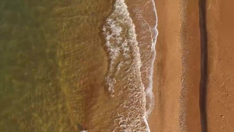 Осенний Крым наполнен первобытными загадкам и мистикой! Посмотрите это видео и убедитесь сами.