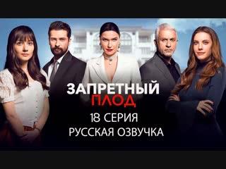 Live: ПЕРЕВОД ТУРЕЦКИХ СЕРИАЛОВ
