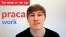 Learn Polish Language: The word of the day - praca