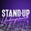 Проверки Stand Up Underground