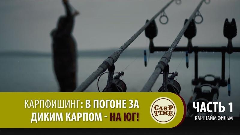 Карпфишинг В погоне за ДИКИМ КАРПОМ на ЮГ Часть 1