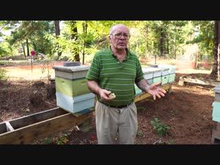 Рассказываем Как Подготовить Пчёл к Зиме.