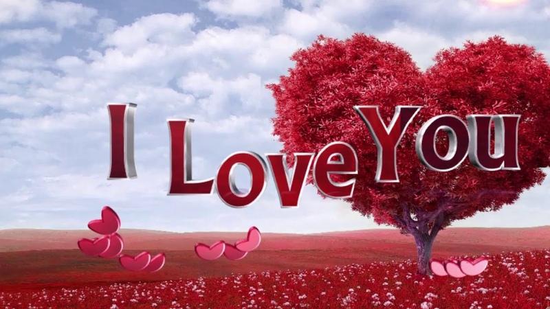 ভালবাসার রং কেমন ছোট গল্পো । How is the color of love। ভালোবাস24