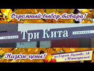 ТРИ КИТА_осень-2018