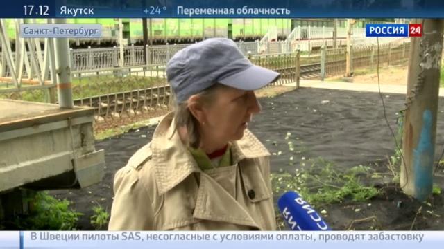 Новости на Россия 24 • Эко-батл в Петербурге: газон оказался сильнее асфальта