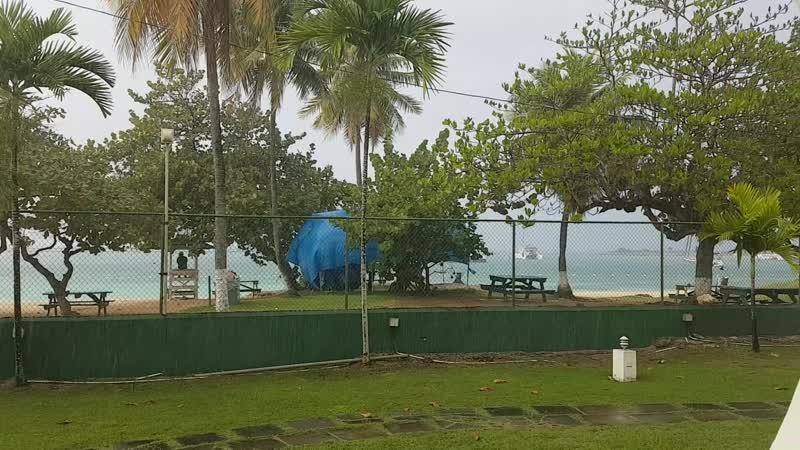 Ямайский ливень