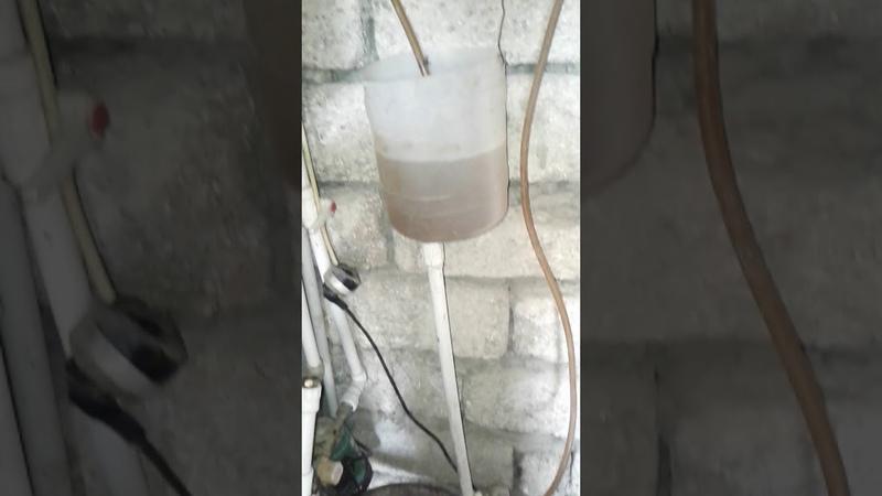 Промывание теплообменника Immergas