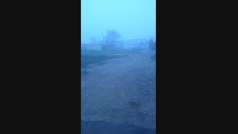 Недо зомби апокалипсис 10 11 18 Краснодар