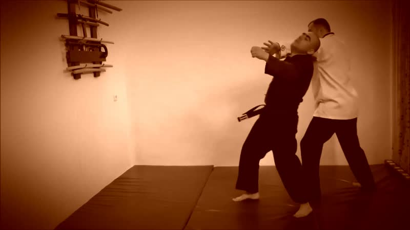 Rebel Hapkido Series 합기도 By Vidadi Hajiyev (52)