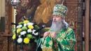 Проповедь митр Арсения в День Святой Троицы 16 6 19 г