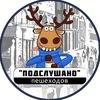 Подслушано пешеходов во Владимире