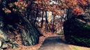 BRENNAN SAVAGE – November
