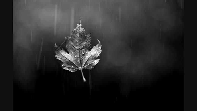 Осенней ночью Кольцо Нибелунга Седьмая тропа 22 12 2018