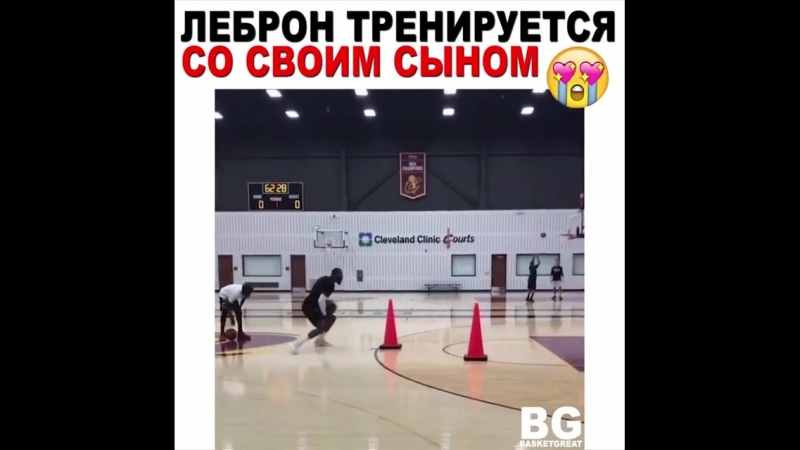 Basketball Vine 1267