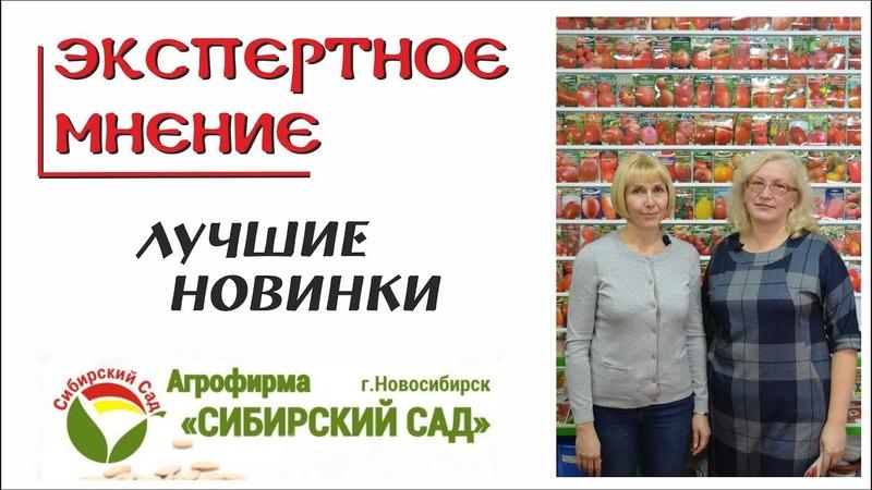Сибирский сад. Лучшие новинки 2019 года. Томаты, перец, баклажан