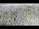 Озеро Смуга исчезает. Крупнейший водоём под Брестом требует немедленного спасения
