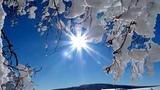 Антонио Вивальди Зима
