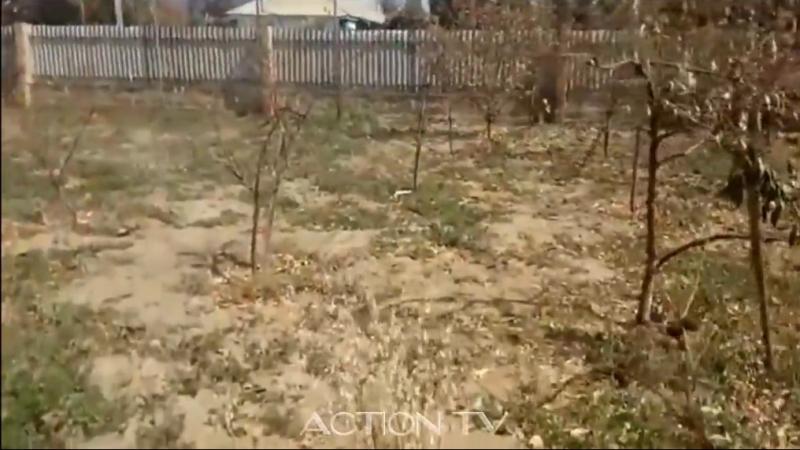 Крым (Перекоп) - опавшие листья, металл в ржавчине и проблемы со здоровьем