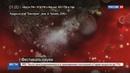 Новости на Россия 24 Телеканал Наука выпустил научно популярный фильм о бактериях