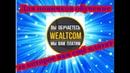 WealTcom Для новичков обучение ,за которое вам ещё платят !