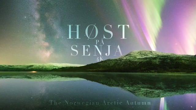 FALL AT SENJA - Норвежская арктическая осень (4K)