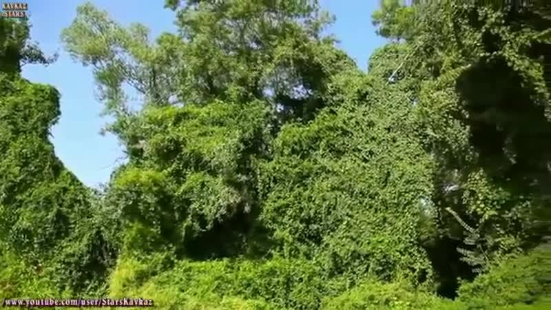 СКАЗОЧНЫЙ ДАГЕСТАН. Видеоклип про красоту Дагестана. Эвик Алиев - Не верьте