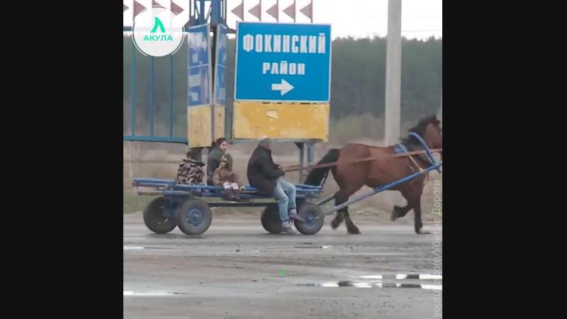 Худшие дороги России | АКУЛА