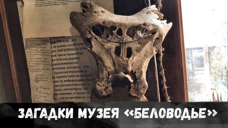 Интереснейший Музей «Беловодье» в Адыгее