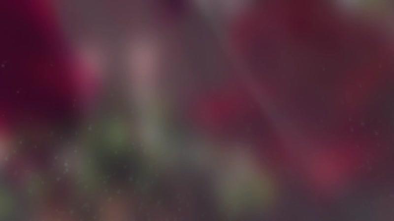Шоу 1 вопрос на 100 игроков от Аватаркино 2 выпуск