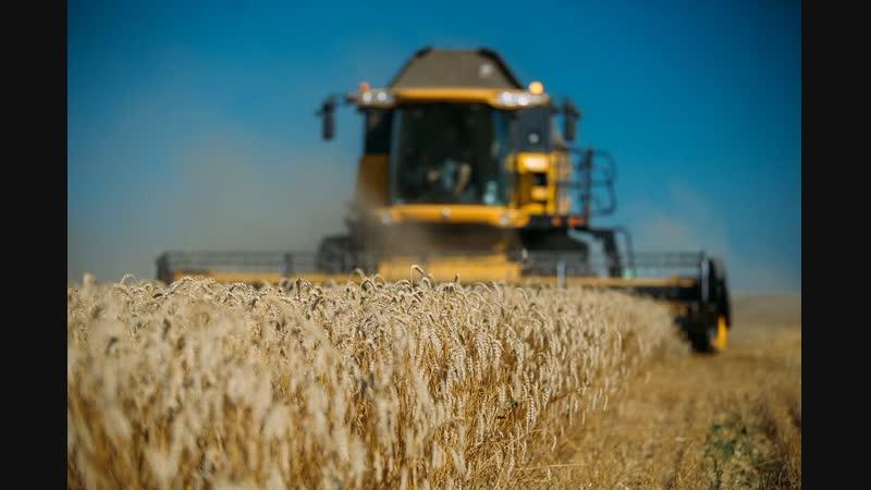 Курские аграрии завершили сельскохозяйственный год