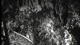 Cecil B DeMille_1923_La Costilla de Adan (Milton Sills, Elliott Dexter, Theodore Kosloff, Anna Q Nilsson, Pauline Garon)