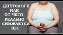 Как нас дурят диетологи От чего на самом деле зависит сброс веса