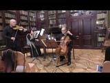 Bach - Sonata Violin in E minor BWV 1023