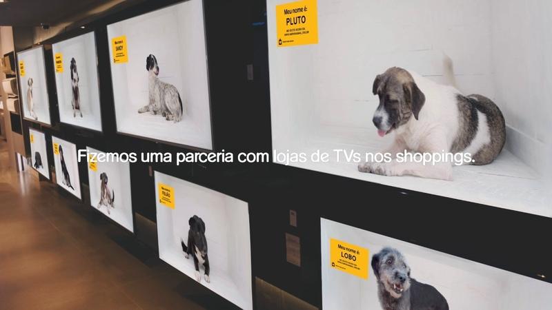 Dog Channel PEDIGREE® AlmapBBDO