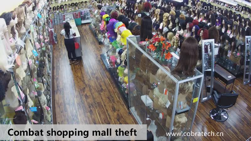 Loss prevention,shoplifter,shoplifting,sensormatic,checkpoint,retail,security,