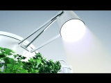 eco air purifier