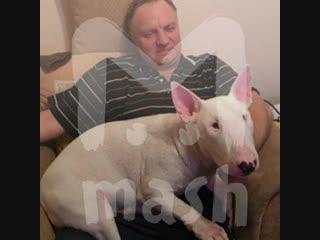 В Красноярске нашёлся дедушка с собакой, которого три недели искали в тайге