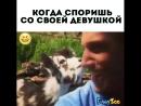 Смешные видео с животными -- on Instagram_ __животMP4.mp4