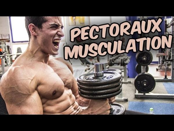 PECTORAUX ! PROGRAMME MUSCULATION !