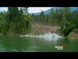 EPIC mudslide caught on camera Raw Video