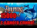 Неожиданный выигрыш в казино вулкан ИГРОВОЙ АВТОМАТ ДЕЛЬФИН как выиграть в онлайн слоты на деньги