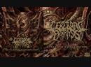 CEREBRAL PARALYSIS - Cycles of Evisceration