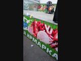 Ангелина Логовник - Live