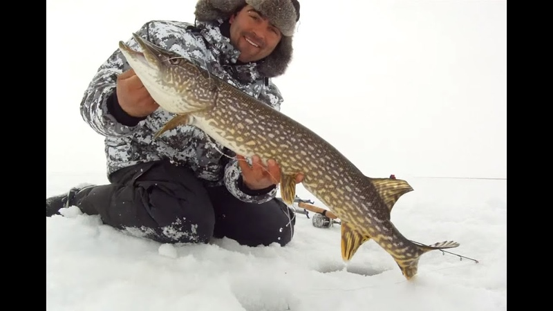 How to Fishing Northern Pike with Jaw Jacker and Rod Review