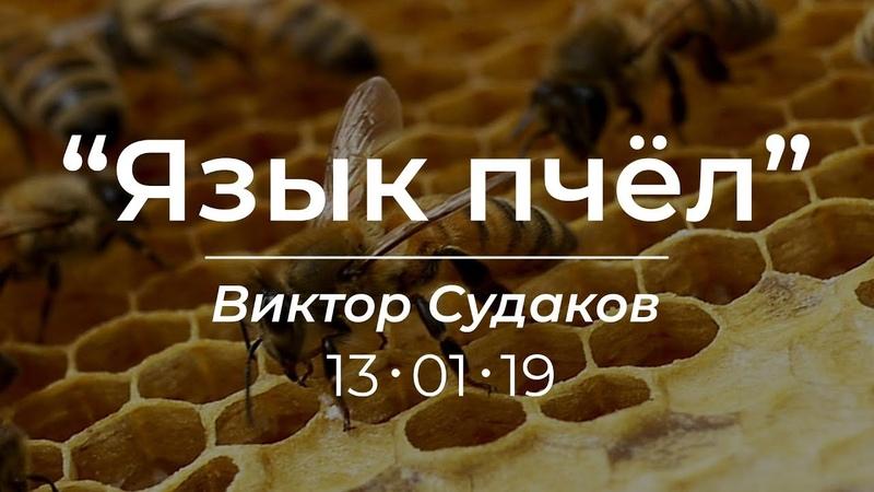 Виктор Судаков - Язык пчёл